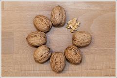 walnuts circle
