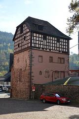 Untere Burg in Alpirsbach