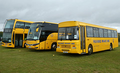 Provence Private Hire display at Showbus - 29 Sep 2019 (P1040453)