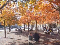 Warten im Herbst -