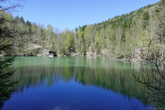 am Staufensee (© Buelipix)