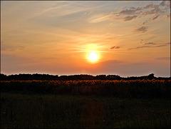 coucher de soleil ,,,