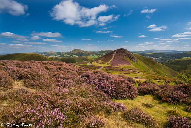 Long Mynd Views