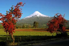VOLCAN OSORNO - CHILE
