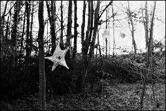Paper star SE5.