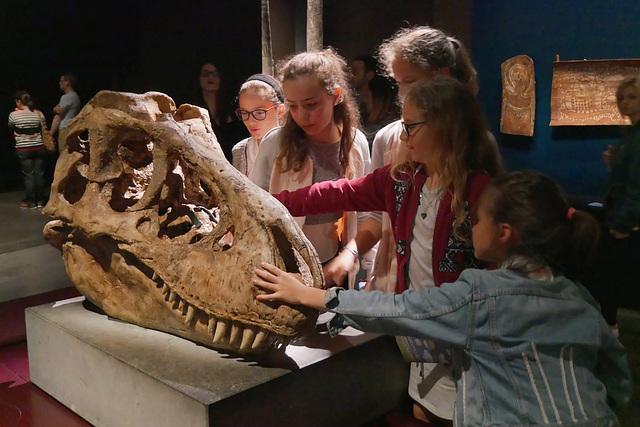 Tarbosaure (-71 millions d'années)