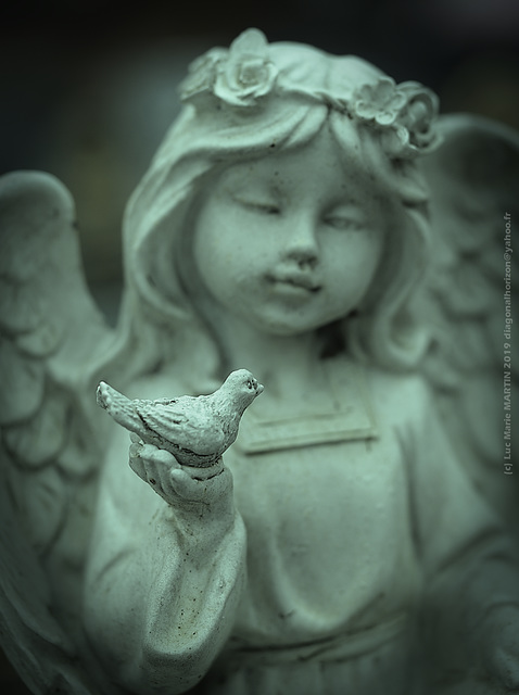 Care & Carpe Diem... (Angel series)