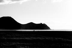 The Birds, The Stump & The Headland.