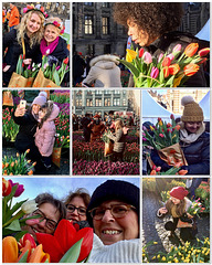 Tulips in Amsterdam, 3...