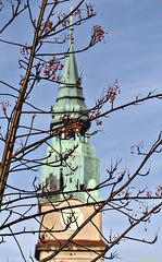 Baum vorm Fenster: mit Hintergrund