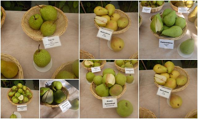 Pillnitzer Apfel- und Birnentag
