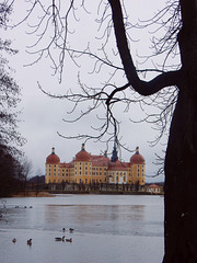 093 Winter in Moritzburg