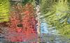 Un bouquet de couleurs...