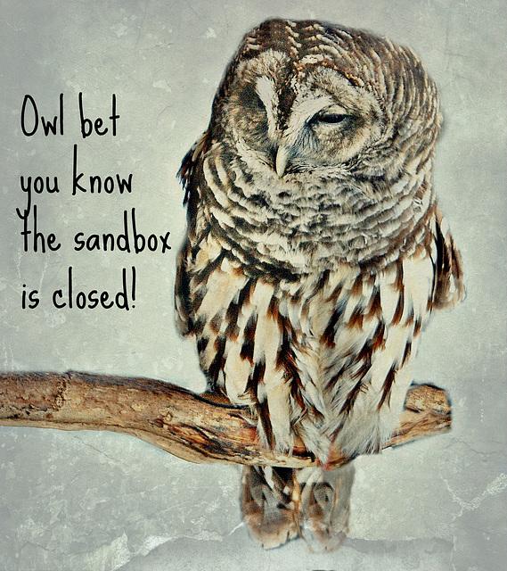 OWL (explore)