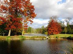 Šestáček & Rudolfův rybník