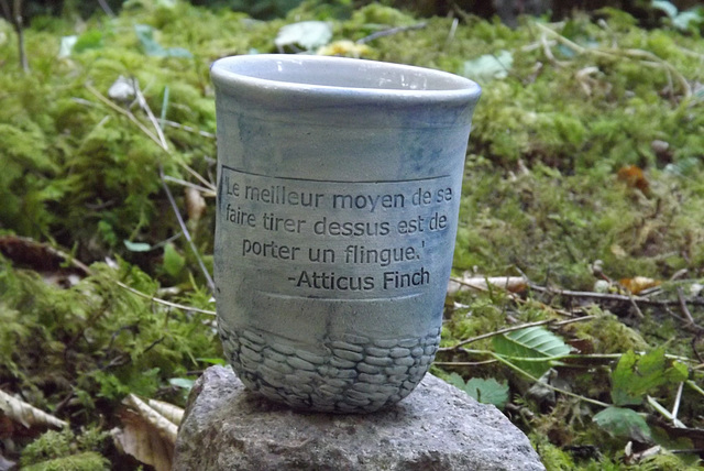 vdf 199 Pas de bol (21) citation Atticus Finch