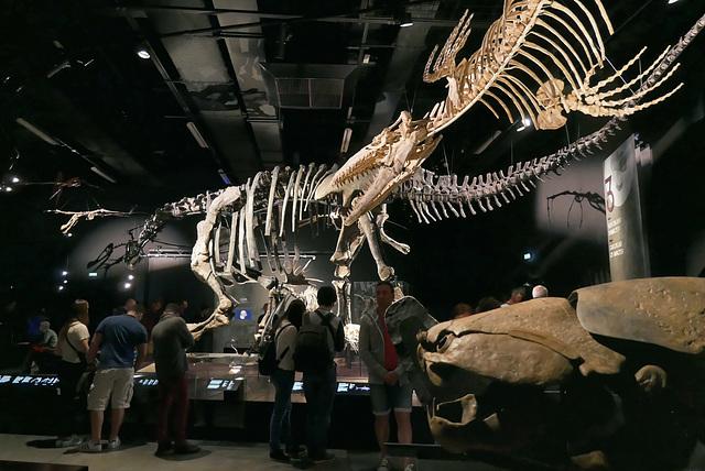 Au premier plan, un Dunkleosteus (-420 à -360 millions d'années)