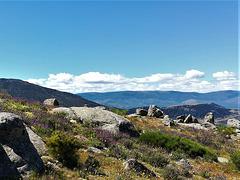 Cantueso, La Sierra de La Cabrera