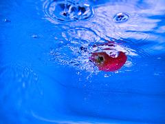 1 (41)...apple falling in blue water