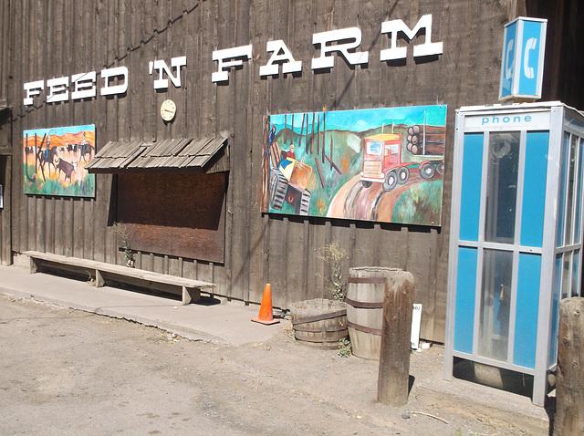 Feed n farm phone call