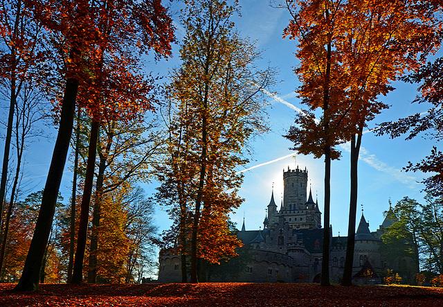 Herbst vorm Schloss