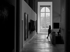 Muséum - Museum