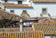 roofscape 11