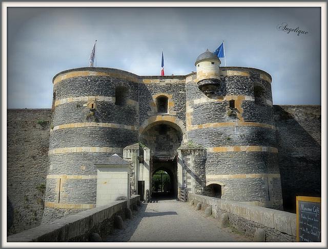 Château D'Angers !