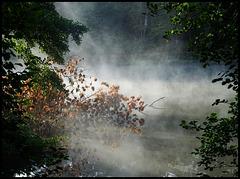 1er Septembre, 1ère brumes matinales...