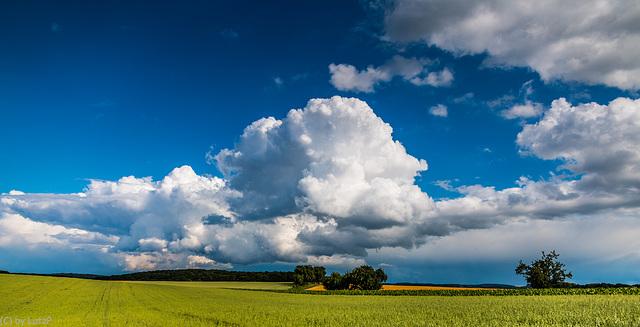 Fat Cloud - Dicke Wolke  (165°)