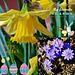 Feliĉan Paskon al ĉiuj! Happy Easter!!