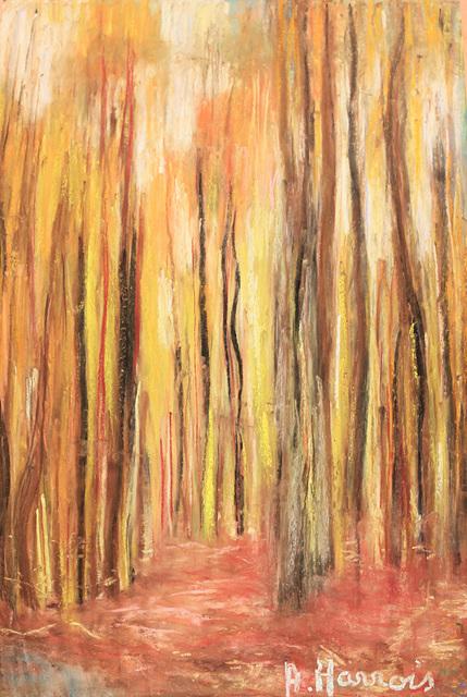 """la Forêt"""