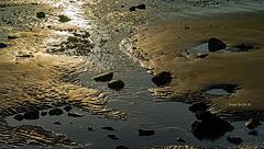 Beach Stream at Sunset