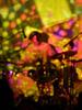 texture / background - Live Music - Drum