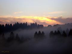 Jesenji sumrak (Autumnal twilight)
