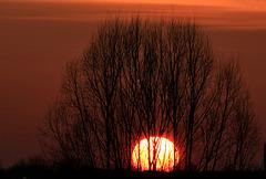 Sonnenuntergang über den Hausdächern meiner Nachbarn