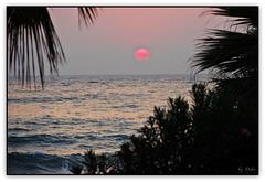 Pacman - Sun of a Beach (◕‿-)