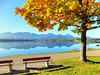 Herbst am Hopfensee... ©UdoSm