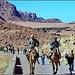 SINAI : questa è la strada che porta al monastero - a piedi o in taxi dromedario !