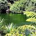Green World.