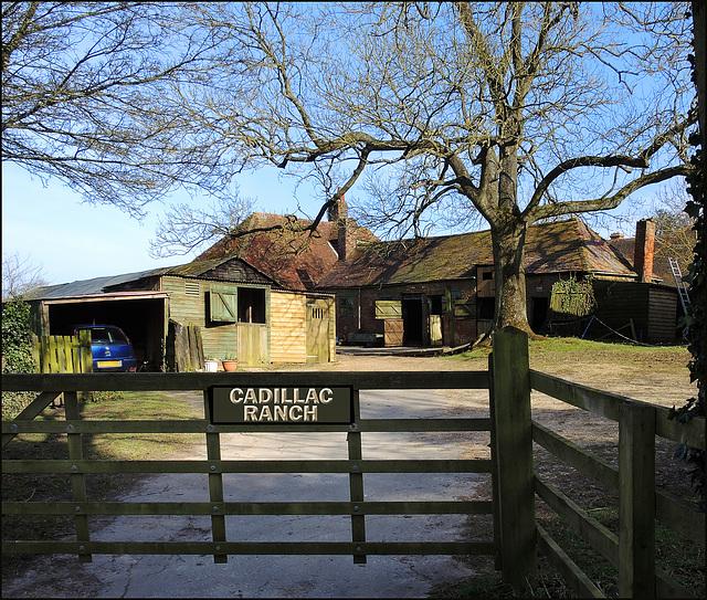 """Cadillac Ranch"""