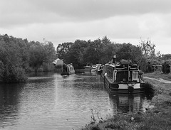 Scene on the Macclesfield Canal