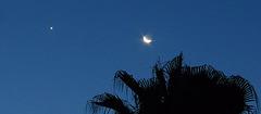 Mond und Venus