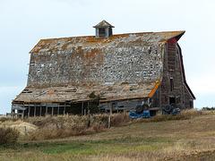Filtered barn