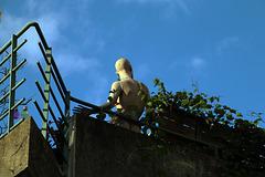 Exhibitionniste sur la terrasse d'une école de religieuses . Aucune plainte n'a été déposée à ce jour.... .