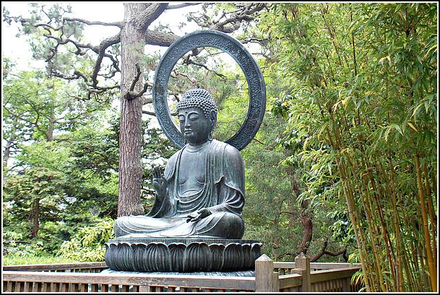 Buddha ~ Japanese Tea Garden