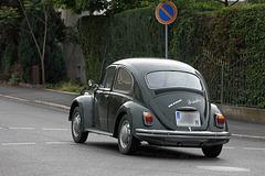 Käfer unterwegs