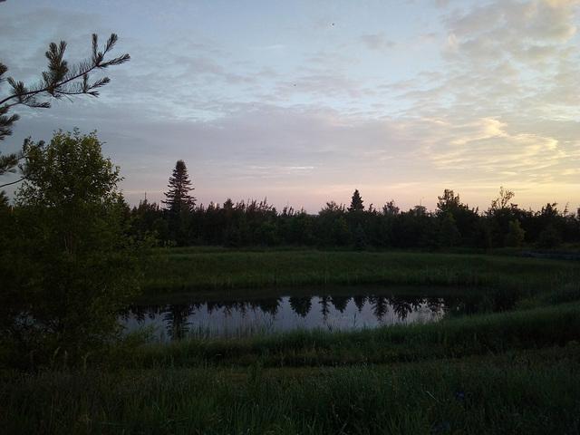 Pond rising /  Un étang se lève.....