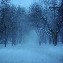 Blue Chicago Blizzard