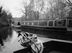 On the Staffordshire and Worcestershire Canal 2